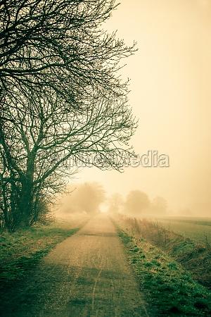misty drogowego wczesnym rankiem