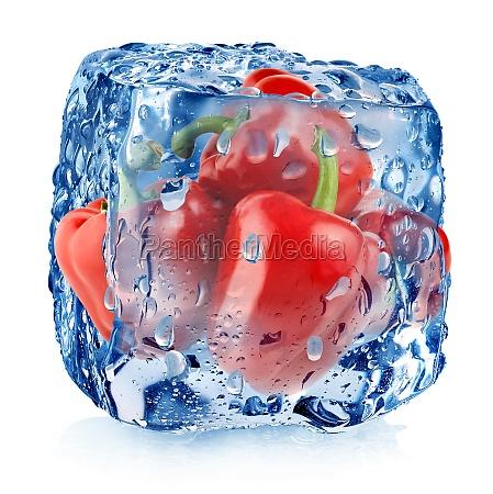 czerwona papryka w kostce lodu