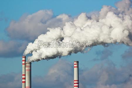 palenie wedzone pali dym skrupuly niebieski