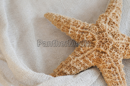 linen fabric with starfish
