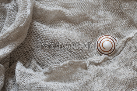 linen fabric with snail shell