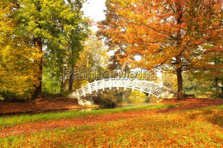 sloneczny jesienny dzien w parku