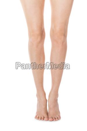 elegant long shapely naked female legs