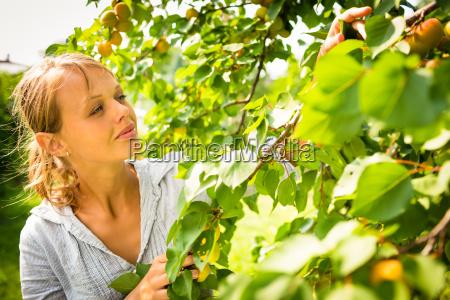 kobieta womane baba ogrod ogrodek lato