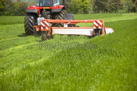tractor cutting silage in farm field