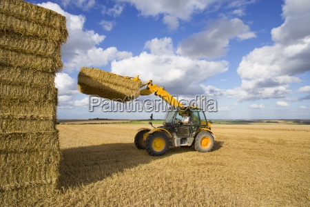 farmer in tractor stacking straw bales