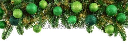 izolowane galezie fir z zielonymi kulkami