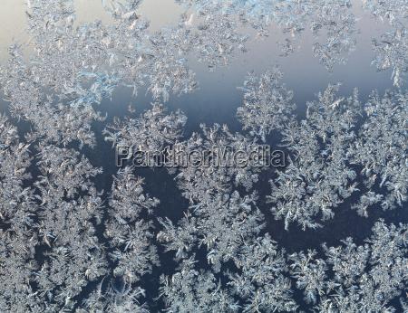 platki sniegu na windowpane na poczatku