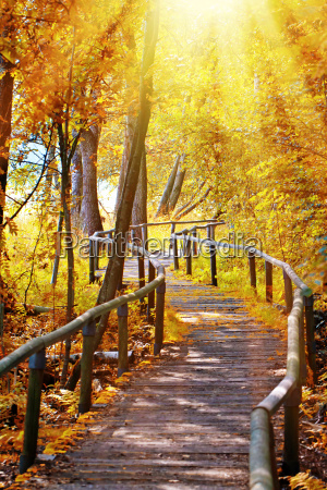 las dala jesienia szwabskich schopfloch
