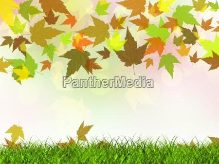 lisc jesienny pazdziernik trawnik laka zielen