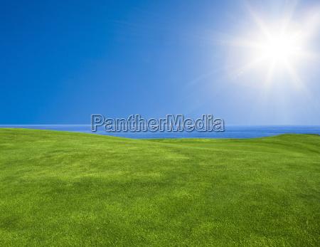 piekny zielony krajobraz