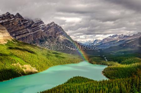 sceniczny widok gorski peyto jeziorna dolinakanadyjskie