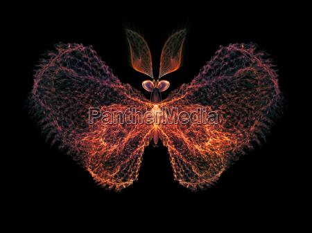 wirtualny butterfly