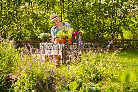 rosliny sloma ogrodnik kapelusz