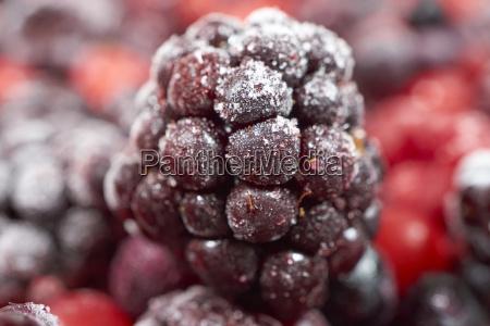 zblizenie owoce frozen mrozone jagody malina