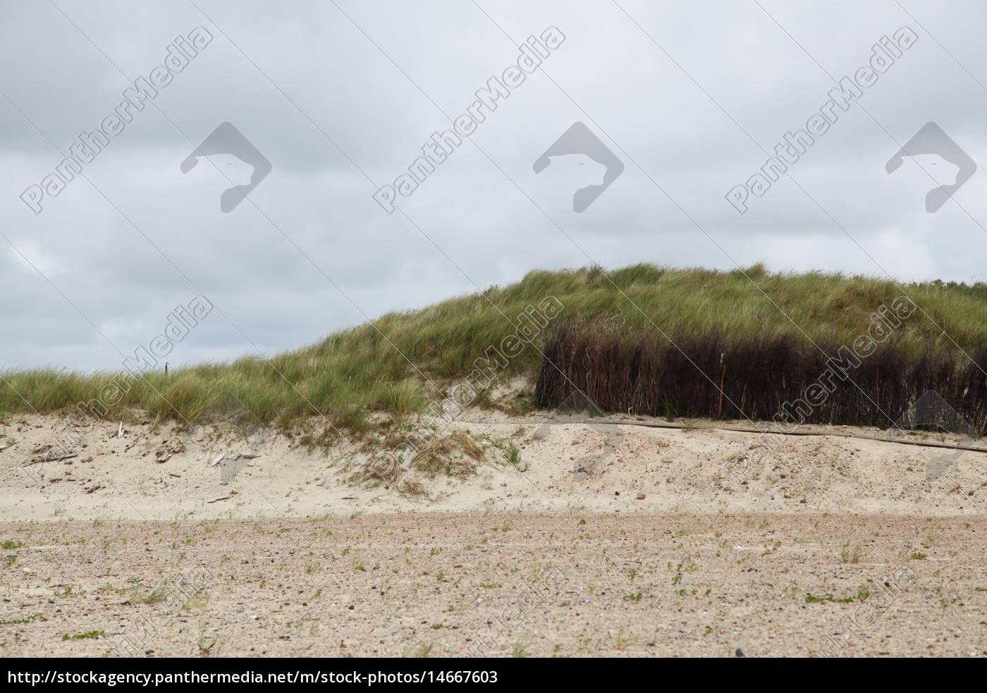 przyroda, środowisko, urlop, urlop wypoczynkowy, święto, wakacje - 14667603