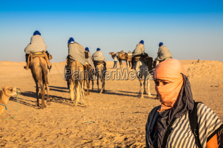 beduins leading tourists on camels at