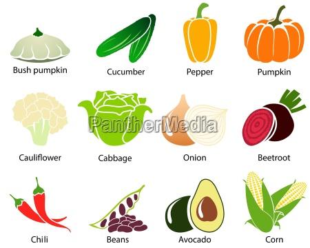 ikony warzyw z tytulem