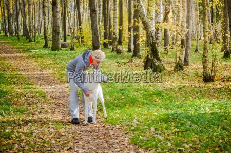 chodzenie zwiedzanie piekny mily zwierze aktywnych