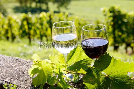 kieliszki czerwonego i bialego wina z