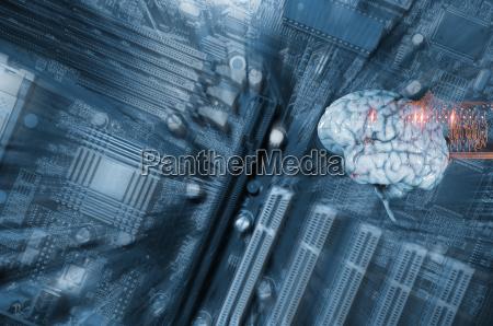 komunikacja komunikat komunikation mozg mozgu inteligencja
