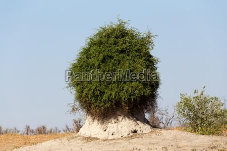 afryka pejzaz krajobraz natura