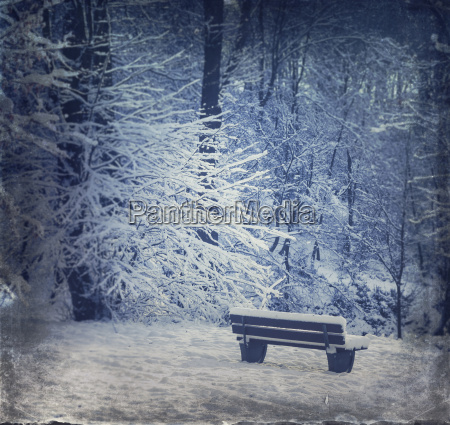 germany empty bench in winter forest