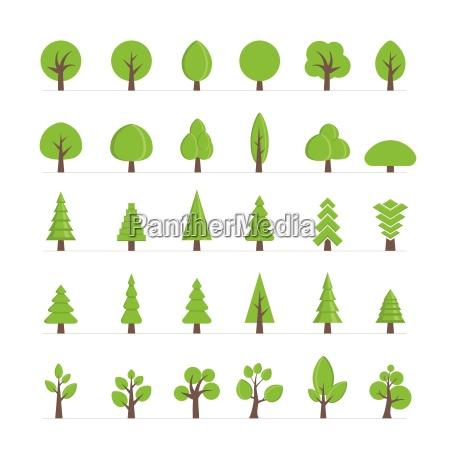 wektor roznych drzew krzewow trawy i