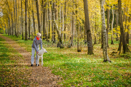 kobieta z psem spaceru w alei
