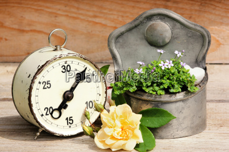 old alarm clock planting time