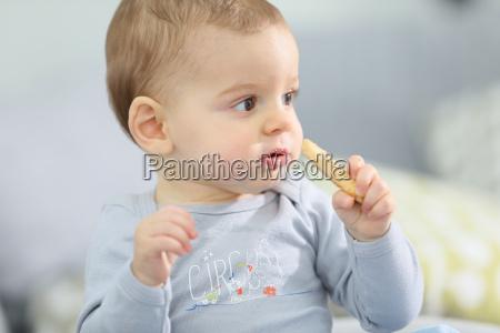 portret ladny chlopiec dziecko jedzenie herbatniki