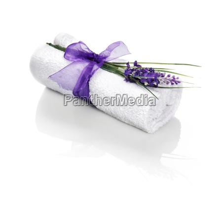 kwiat kwiatek zawod roslina latorosl luksus