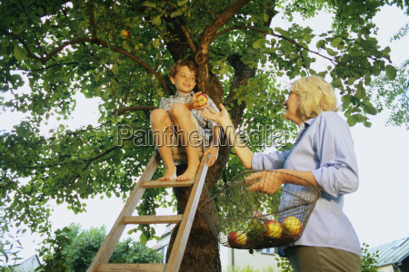 young boy and woman picking apples