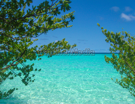 white tropical beach in maldives with