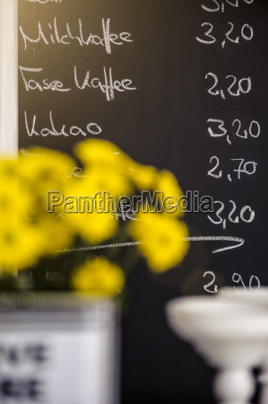 kawiarnia kwiat kwiatek zawod roslina latorosl