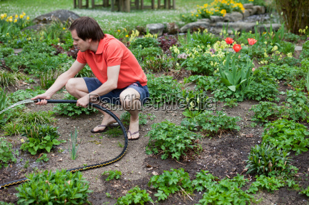 man watering plants with hose