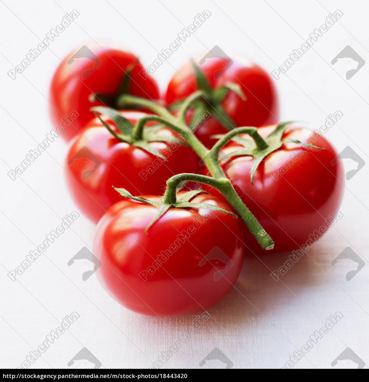 pomidory, na, gałęzi - 18443420