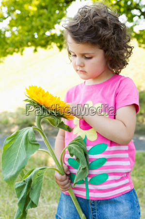 przyroda srodowisko kwiat kwiatek zawod roslina
