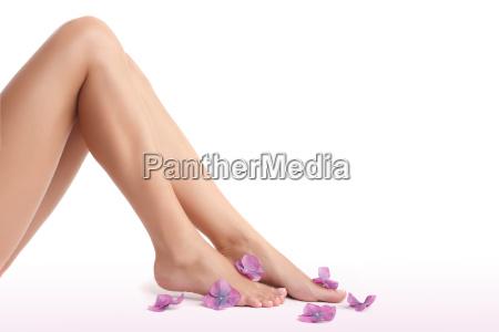 piekne kobiece nogi