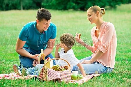 rodzina z piknik w parku