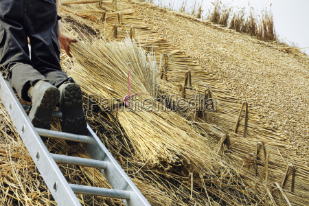 man thatching a roof standing on