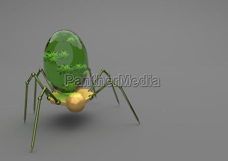 zdrowie zdrowia nauka badanie owad zielony