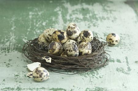 gniazdo wielkanoc z jaj przepiorczych