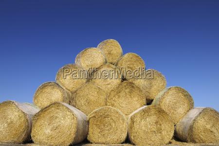 bales of hay ruegen ruegen district