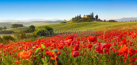 orcia valley i foraret