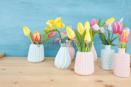 kolorowe kolektora kwiat kwiatek kwiaty kwiatki