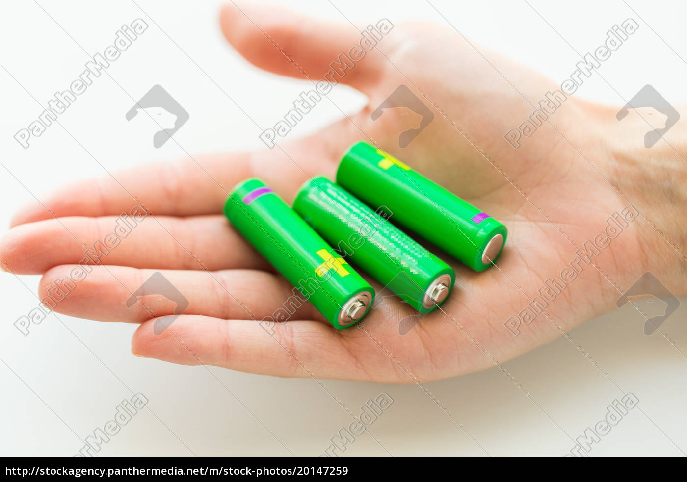 zamknij, się, z, rąk, trzymając, zielone - 20147259