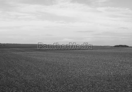 angielska panorama kraju w salisbury w
