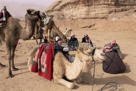 grupa beduinow i wielbladow wadi rum