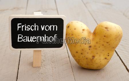 gospodarstwo rolnictwo warzywo gospodarstw ferma kartofel